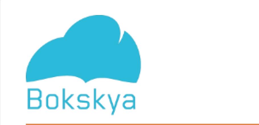 Bokskyas logo er ment å symbolisere drømmen om et bokkjøp